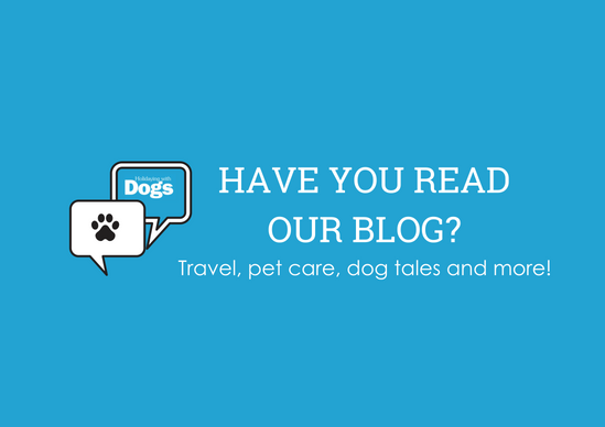 Holidaying With Dogs - Pet Friendly Accommodation, Hotels