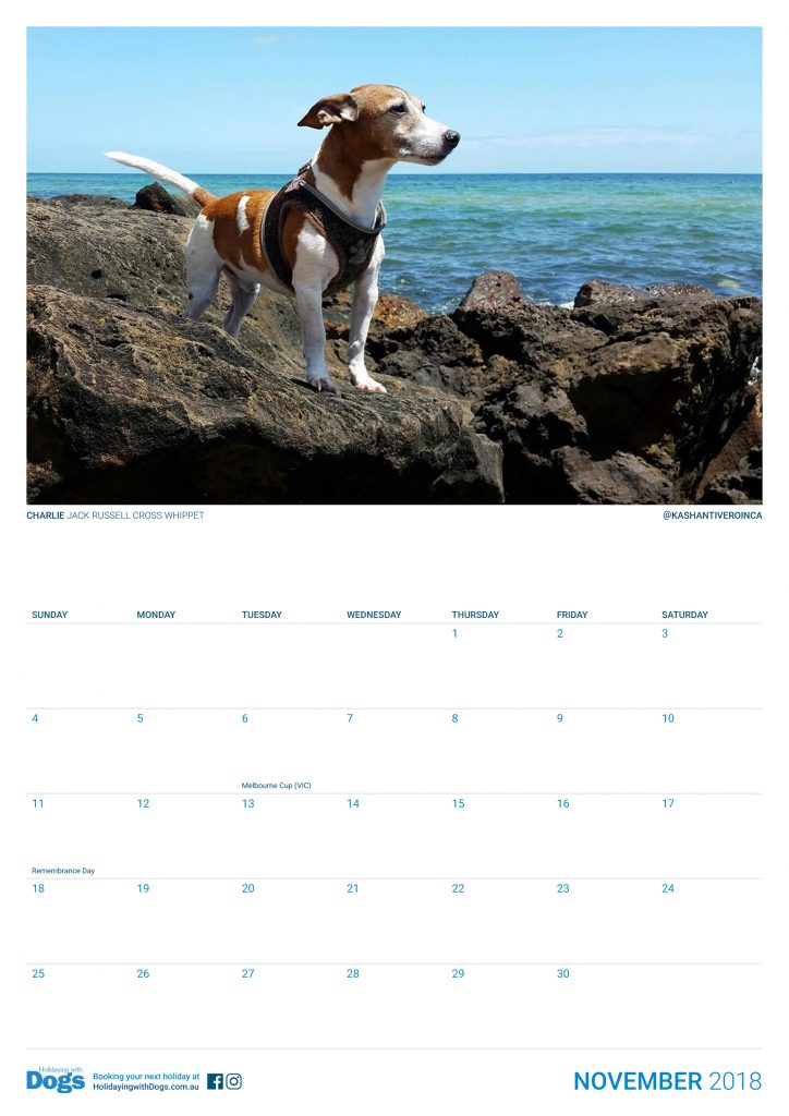 2018 holidaying with dogs calendar holidaying with dogs