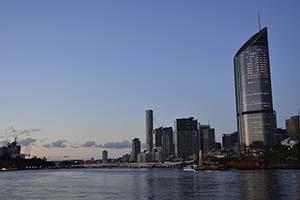 Dog-Friendly Walks: Brisbane