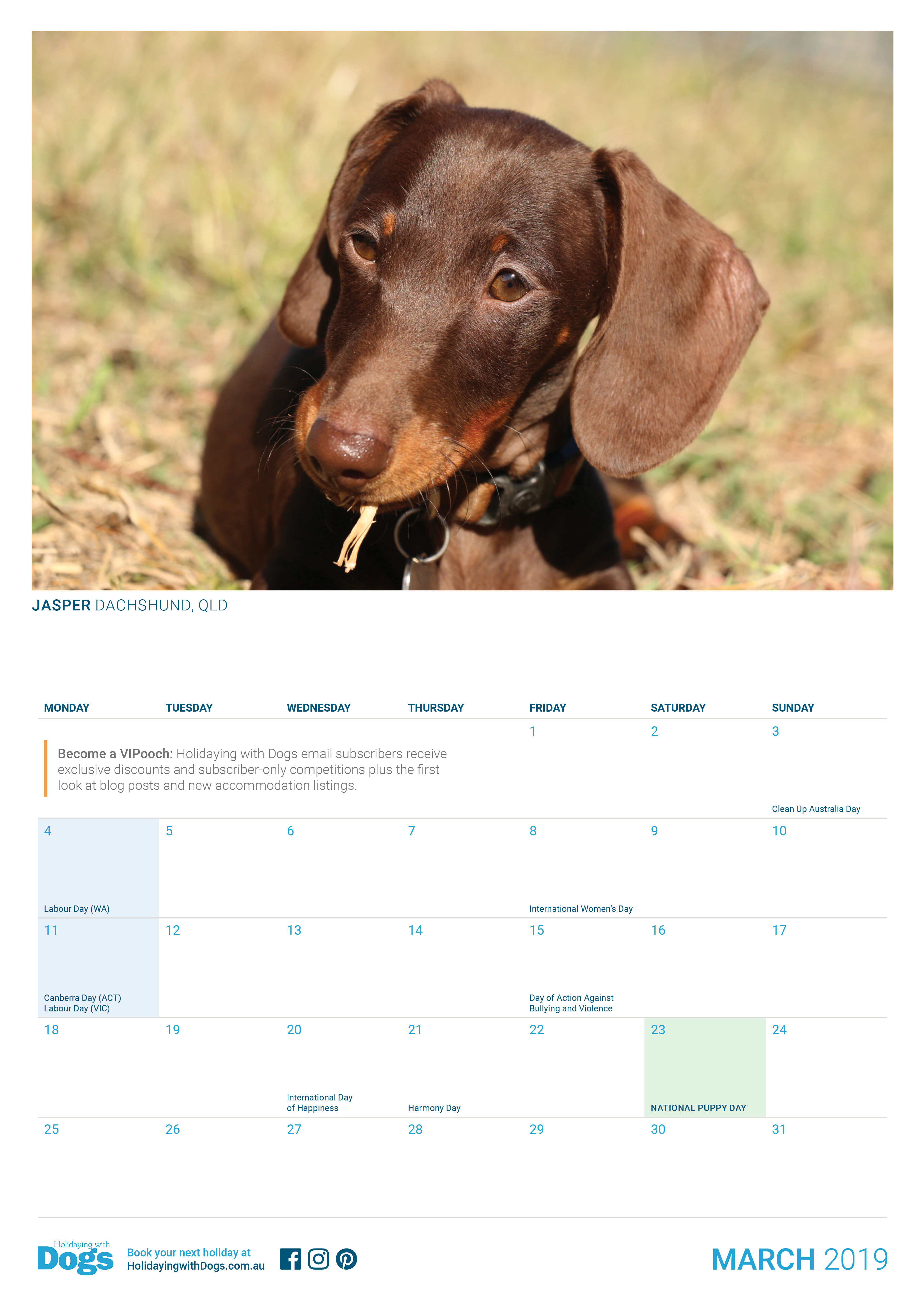 2019 Holidaying With Dogs Calendar Holidaying With Dogs